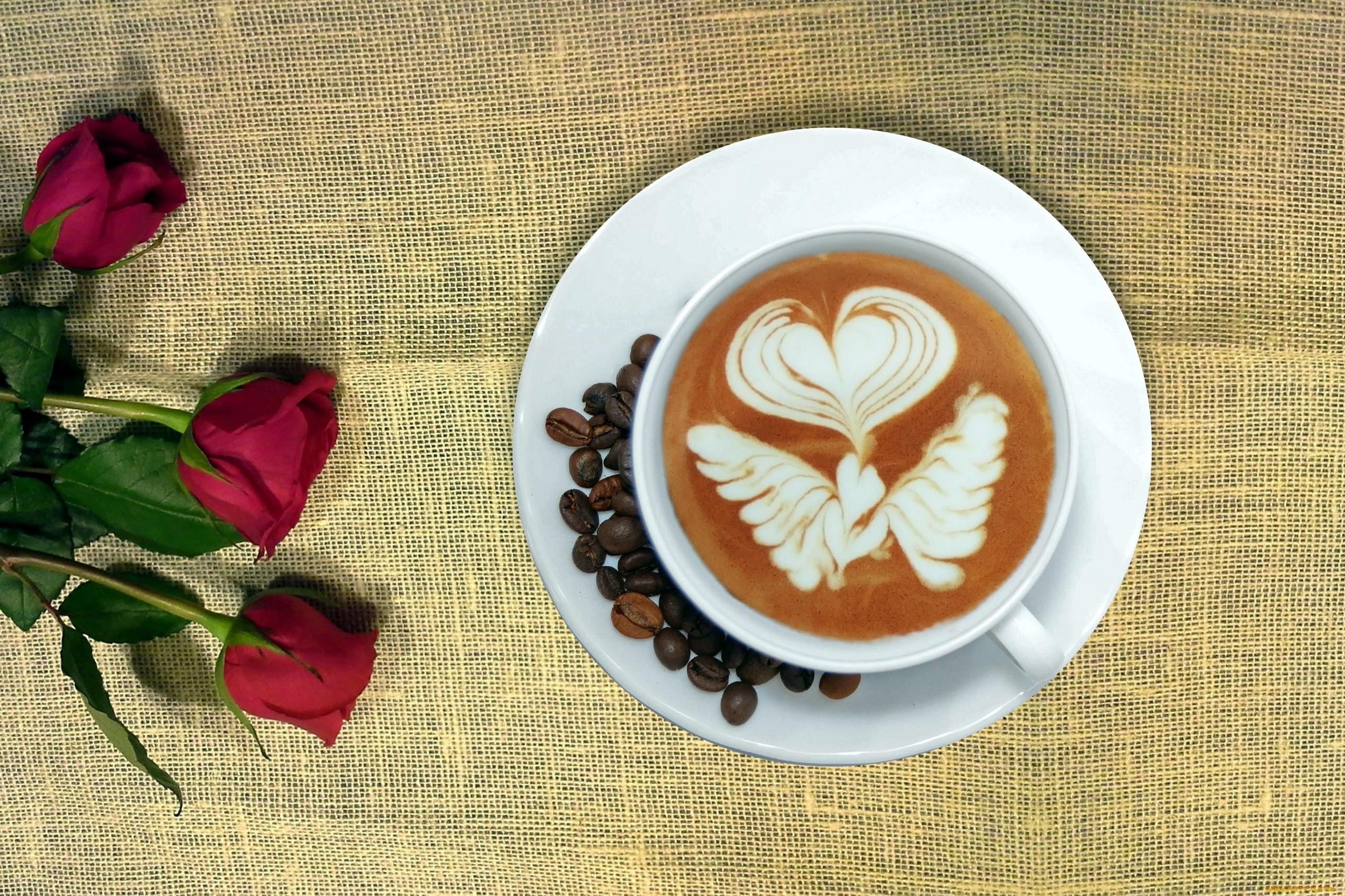 кофе с молоком картинки красивые и с розами цвет